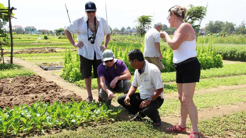 Tra Que Vegetable Village and Sunset Cruise On Thu Bon River (Half Day - RT035)